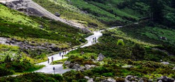 Cyclists taking part in Irelands Premier Cycling challenge the Wicklow 200 which is run by the Irish Veteran Cyclist Assoc climbing through the Wicklow Gap. Photo by Kevin Mcfeely
